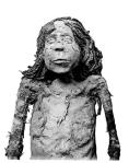 Mummy of Nodjmet